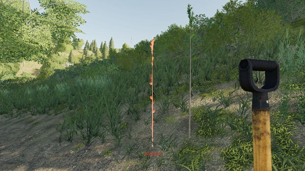 FS22 planting trees
